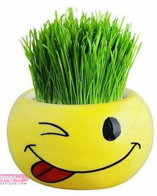 مدل تزیین سبزه سفره هفت سین مناسب نوروز 98