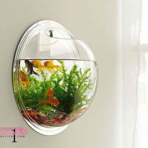 ایده تنگ ماهی روی دیوار