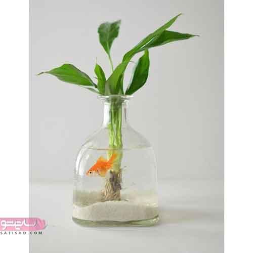 یک ایده ساده برای تنگ ماهی نوروز