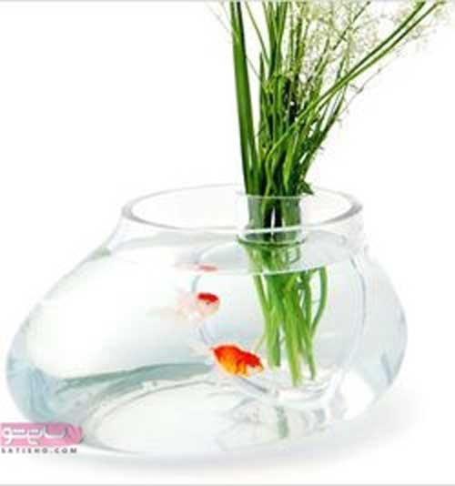 ایده تنگ ماهی جدید برای عید نوروز