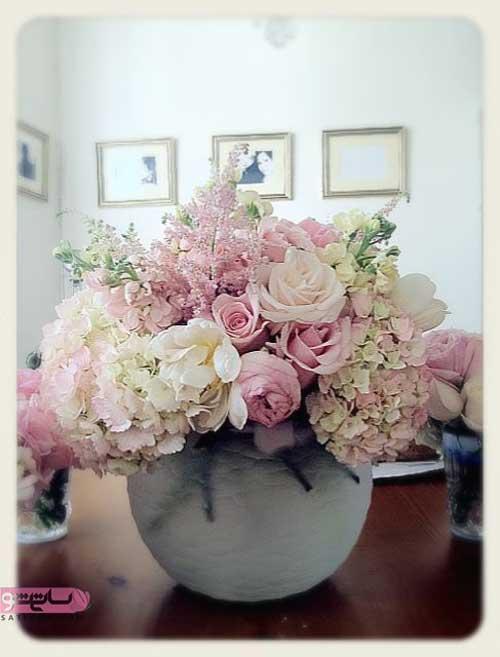 گلدان گل رز با انواع مختلف