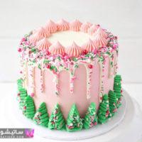 جدیدترین مدل های کیک تولد ساده و زیبا