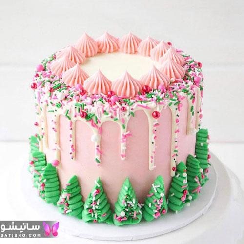 مدل تزیینات کیک تولد با خامه رنگی